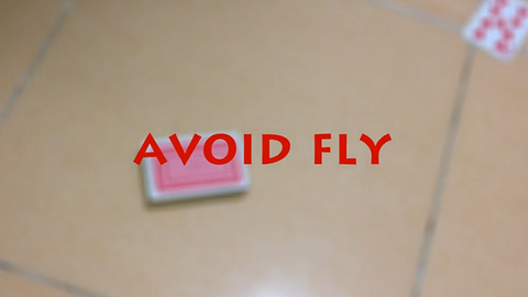 Avoid Fly by Kelvin Trinh video DOWNLOAD