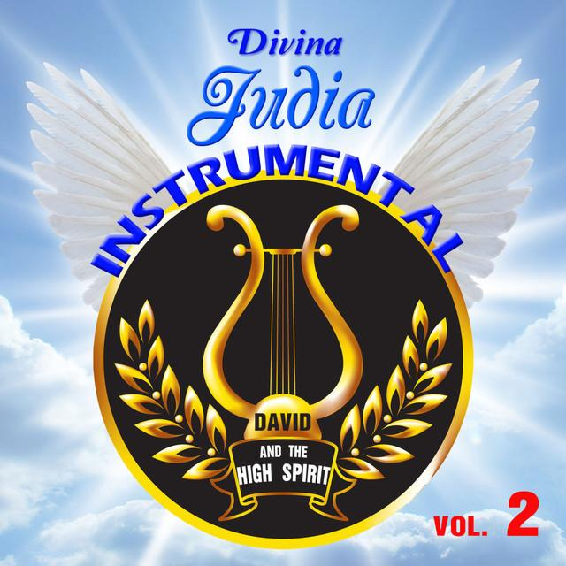 Divina Judia Instrumental Vol.2 Books / Seforim - Mitzvahland.com All your Judaica Needs!