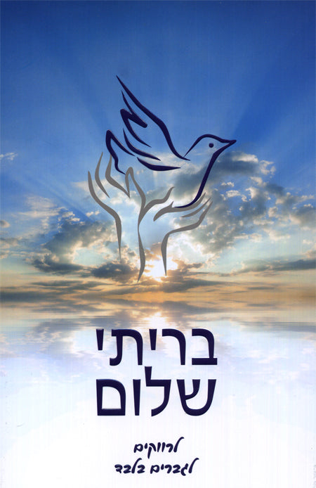 B'riti Shalom Hebrew for Single Books / Seforim - Mitzvahland.com All your Judaica Needs!