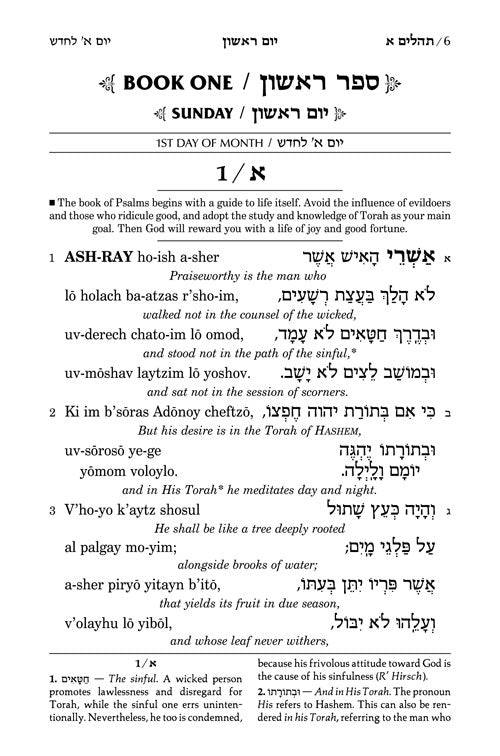 Tehillim / Psalms 1 Volume Full Size - Transliterated Linear