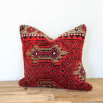 Zeliha 09 Rug Pillow 20x20