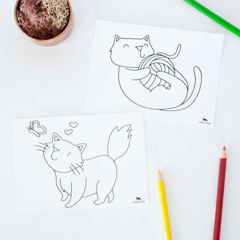 Set of 4 different cat illustrated colouring post cards