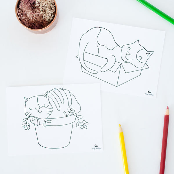 Set of 4 cat illustrated colouring post cards