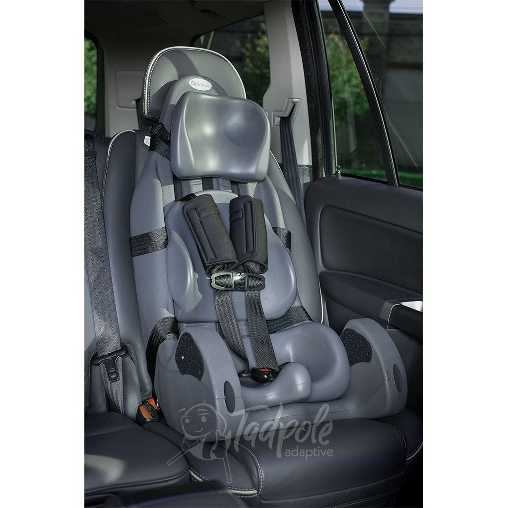 Special Tomato MPS Carseat, main photo.