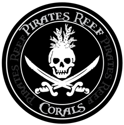 Pirates Reef Corals