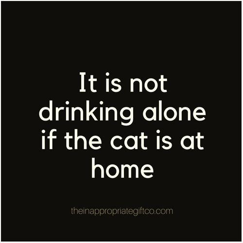 It is not drinking alone if the cat is at home magnet