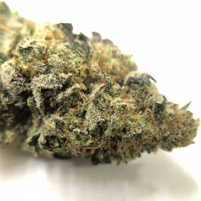 GMO Cookies - Cloud Legends 420