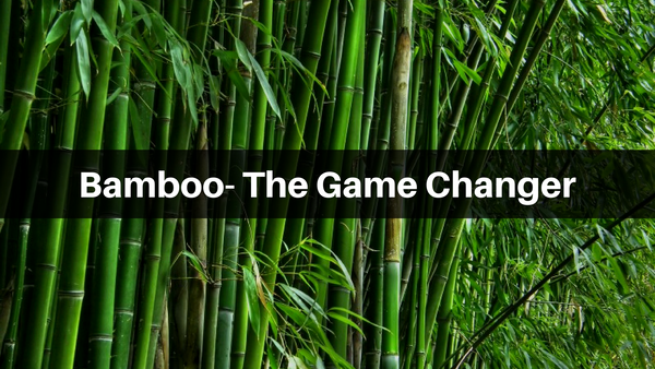 bamboo the game changer eco friendly home shop