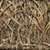 Realtree Max-5/ Buck