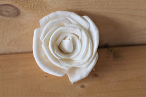 Wholesale /Bulk Sola Wood Classic Roses ( 50 count )