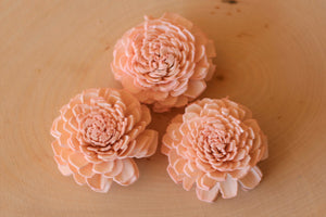 "Blush Pink Bali Sola Flowers 2"" ( Set of 12 )"