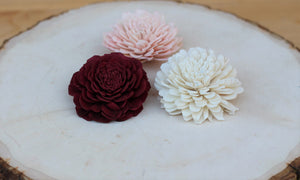 "2"" sample sola wood flower pack"