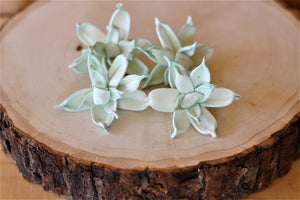 Mint Sola Wood Gardenia ( Set of 12 )