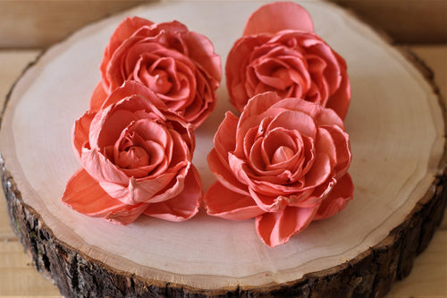 Coral Sola Wood Peonies ( Set of 12 )