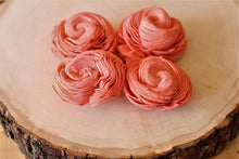 Coral Sola Wood Shell Flowers ( Set of 12 )