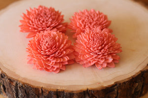 Coral Sola Wood Zinnia Flowers ( Set of 12 )