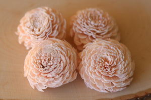 Blush Pink Sola Wood Chorki Flowers ( Set of 12 )