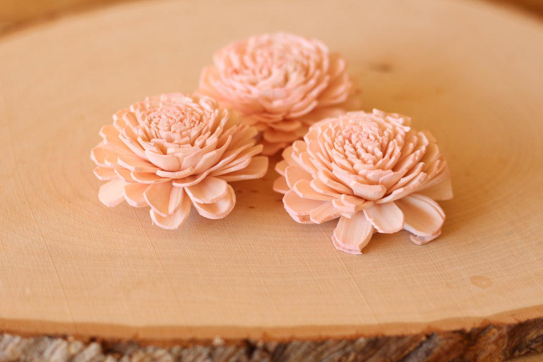 Blush Pink Sola Wood Bali Flowers ( Set of 12 )