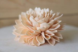 "Peach Sola Dahlias 4"" ( Set of 5 )"