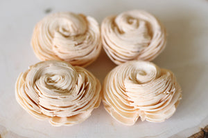 Peach Sola Wood Shell Flowers ( Set of 12 )
