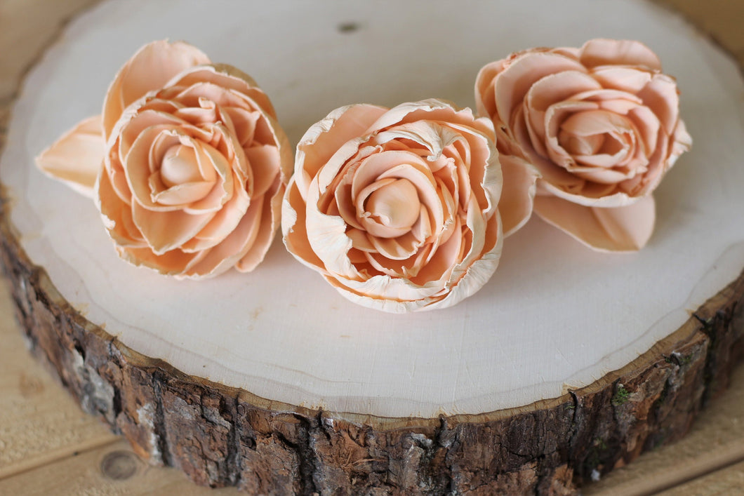 Peach Sola Wood Peonies ( Set of 12 )