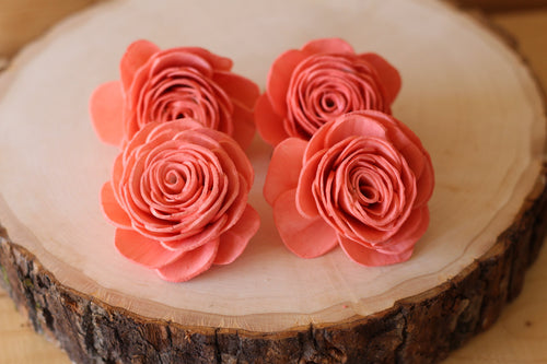 Coral Sola Wood English Rose ( Set of 12 )