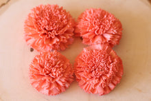 Coral Sola Wood Carnations ( Set of 12 )