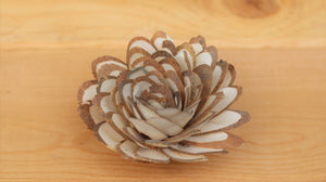 Wholesale/Bulk  Sola Wood Almond Flowers 2.5""