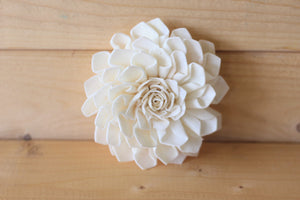 Wholesale/Bulk Sola Wood Dahlias 3""