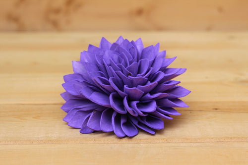 Purple Sola Dahlias 4