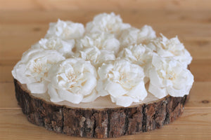 "Sola Wood French Roses 2.5"" - Pack of 6"