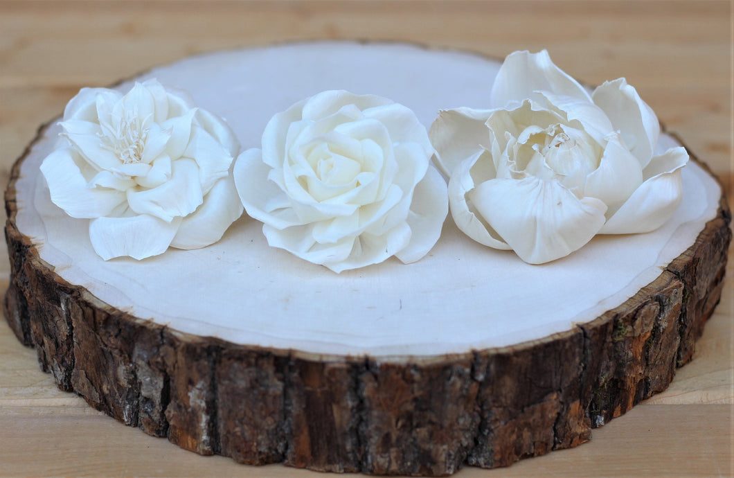 Assorted Sola Wood Flowers 2.5