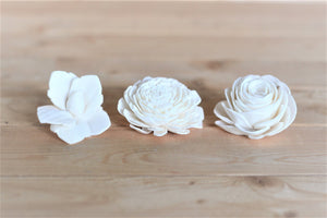 Assorted Mixed Sola Wood Flowers