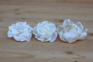 "Assorted Sola Wood Flowers 2.5"" - 3"" -  Set of 12"