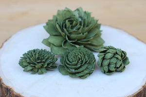 Olive Green Sola Wood Succulents