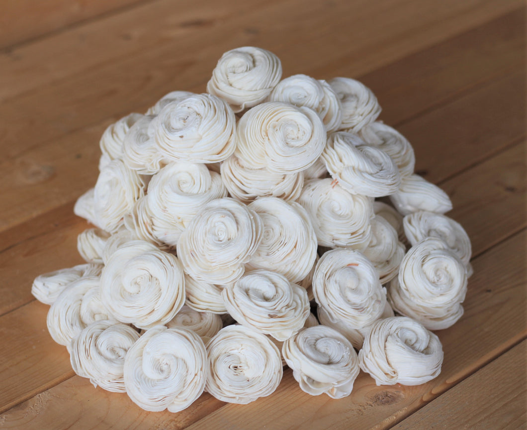 Wholesale/Bulk Sola Shell Flowers 2