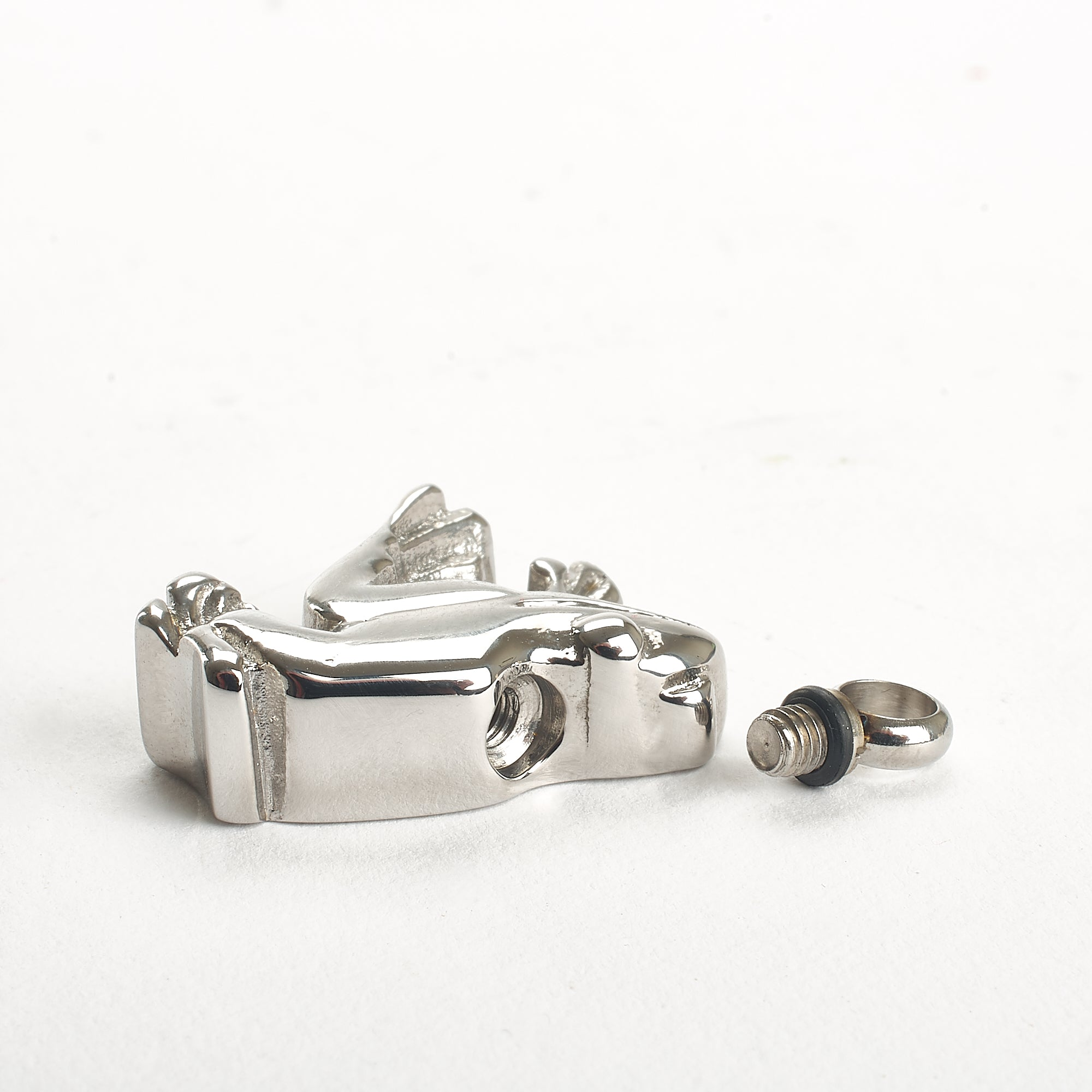 Cremation Pendant - Animal - Silver Frog