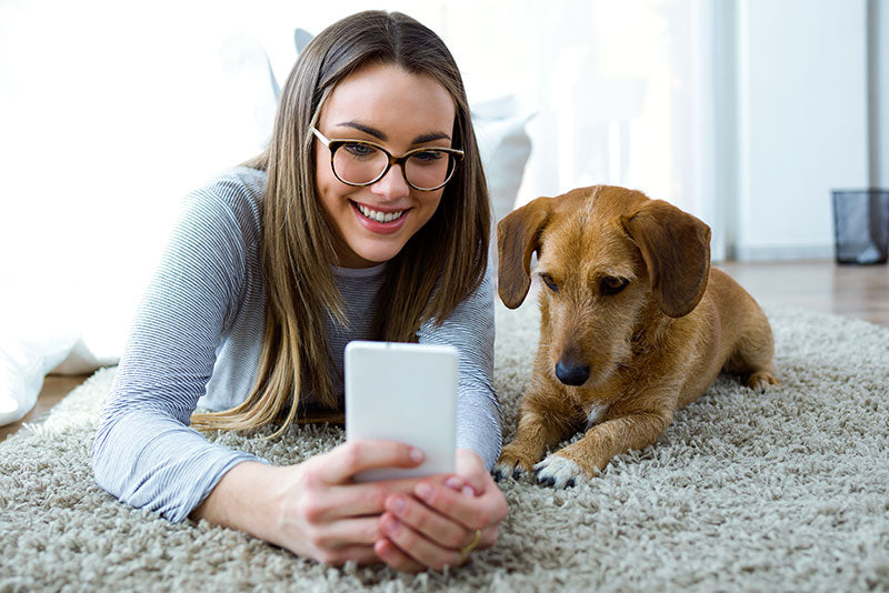 6 Best Apps and Mobile Sites for Dog Lovers