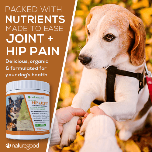 Advanced Glucosamine for Dogs | Hip + Joint | Organic Turmeric