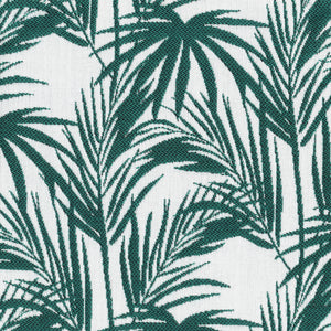 Jewel | Daintree Palm