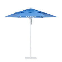 Paseo Umbrella