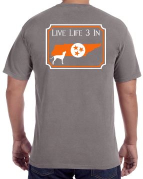 Vols3In Comfort Colors T-shirt
