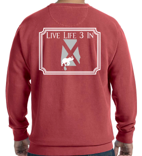 Tide3In Comfort Colors Fleece Crew Sweatshirt