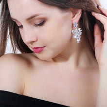 Load image into Gallery viewer, Nora Simulated Diamond Earrings