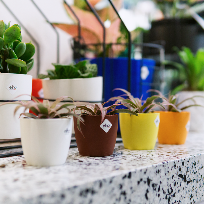 Smart Parenting: Looking For Planters For Your Container Garden? Visit These 6 Online Stores!
