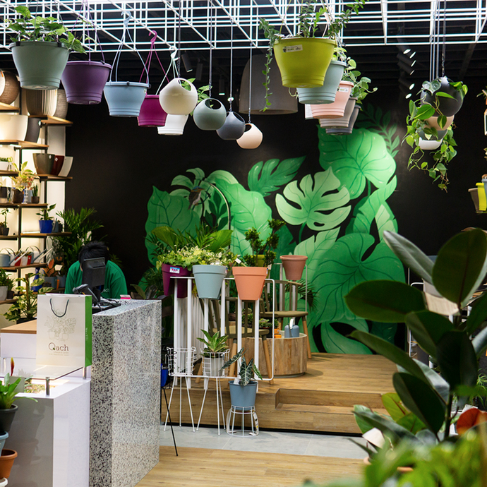 Click The City: 15 Stores Where Plantitas of Manila Can Order Plants