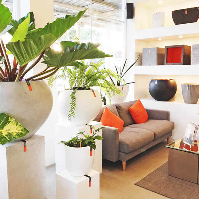 Real Living: This New Garden Store In Laguna Shows Us Modern Ways With Plants