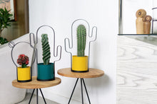 Load image into Gallery viewer, Round Cactus Pot