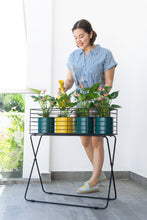Load image into Gallery viewer, Fence Plant Stand