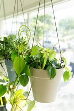 Load image into Gallery viewer, Loft Urban Hanging Basket